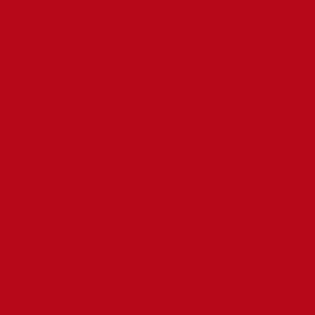 ROJO RUBÍ (R) RAL 3003 - LISOS SEMIBRILLO